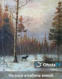 На лося и кабана зимой