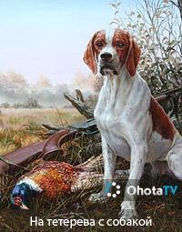 На тетерева с собакой