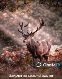Закрытие сезона охоты