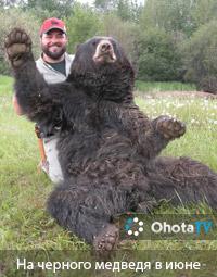 На черного медведя в начале июня