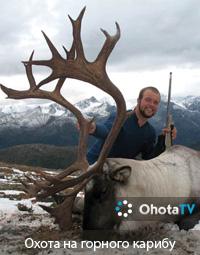 Охота на горного карибу на севере Британской Колумбии