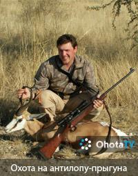 Охота на антилопу-прыгуна