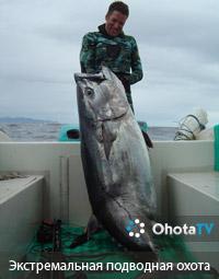 Экстремальная подводная охота