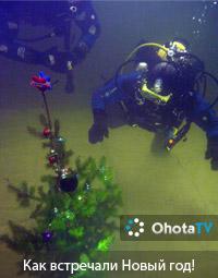 Как подводные охотники встречали Новый год!