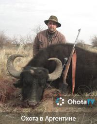 Захватывающая охота в Аргентине