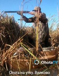 Охота на утку. Вилково