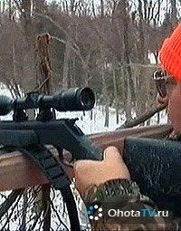 Охота на белохвостого оленя в Онтарио