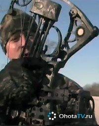 Охота на белохвостого оленя в Айове